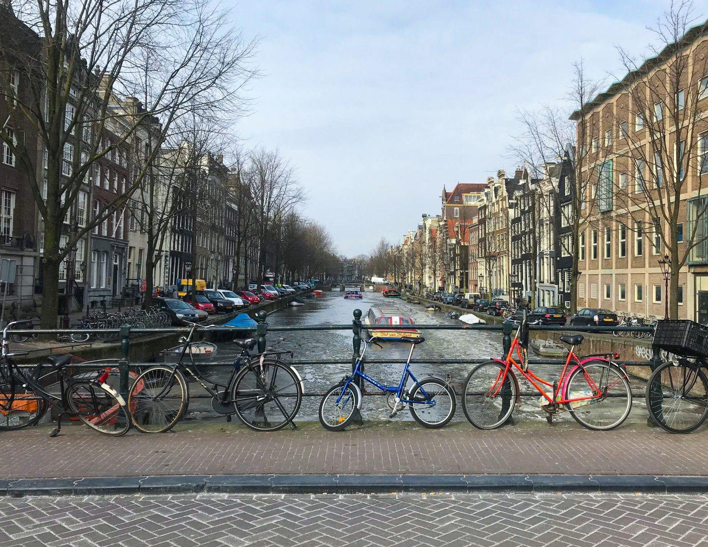 a row of bikes in amsterdam tips on francescasophia.co.uk